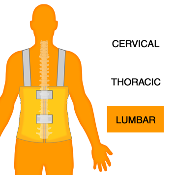 Lumbar Spine Orthotics Back Brace Image