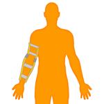 M_Body-O-Arm-Elbow_150x150