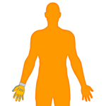 M_Body-O-Arm-Hand_150x150