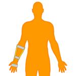 M_Body-O-Arm-Wrist_150x150