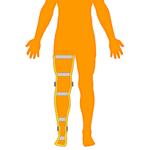 M_Body-O-Leg-Full_150x150