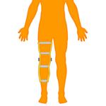 M_Body-O-Leg-Knee_150x150