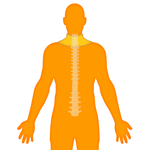 M_Body-O-Spine-Cervical_150x150