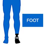 M_Body-P-Leg-Foot_150x150