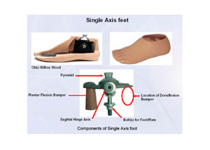 foot single axis